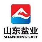 山东盐业集团—鲁盐经贸